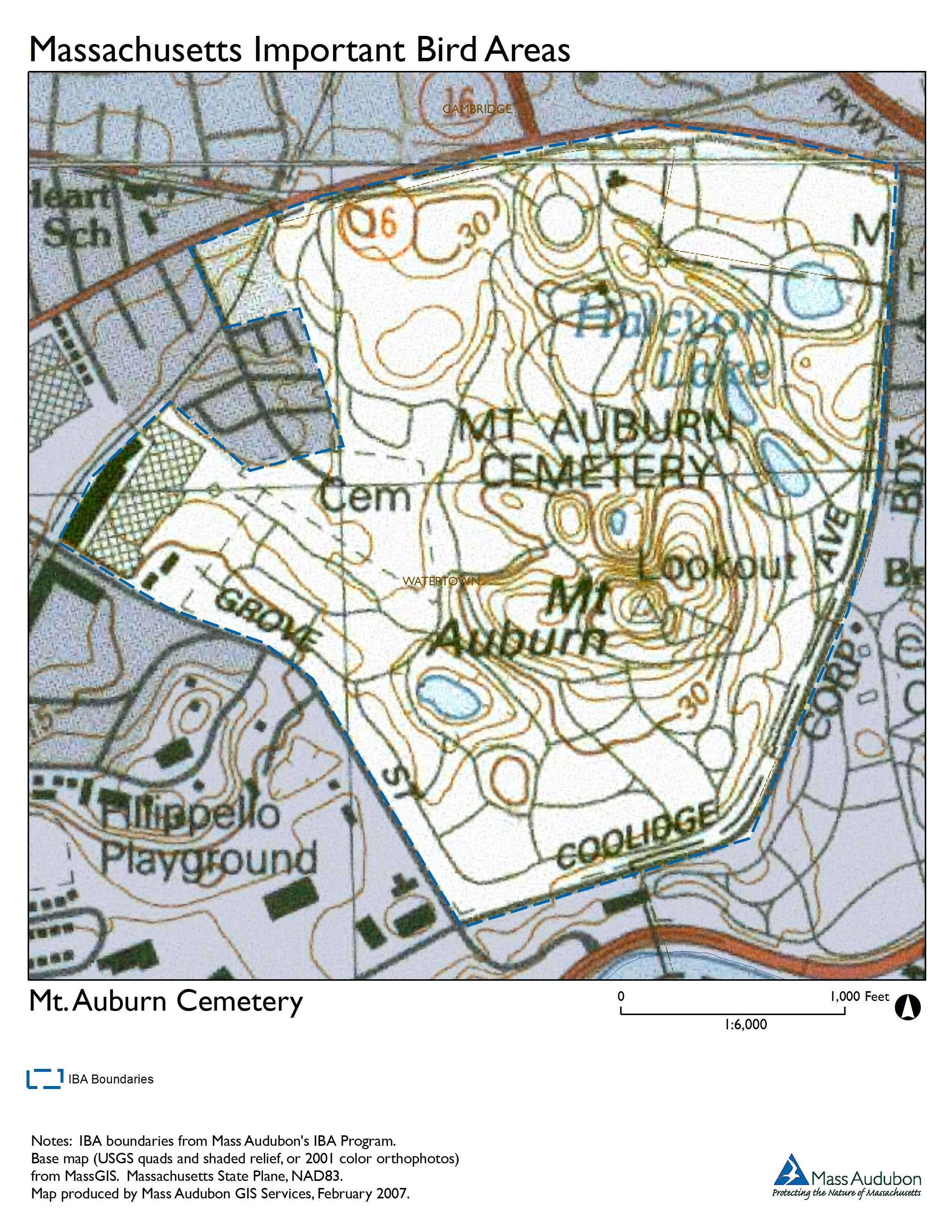 Site Summary Mt Auburn Cemetery - Conservation cemetery map us