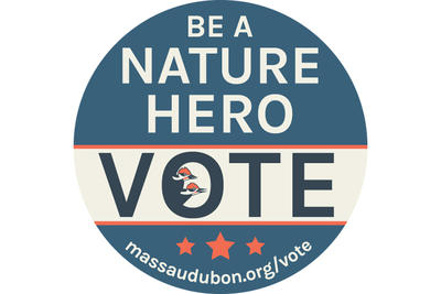 Be a Nature Hero - Vote! button