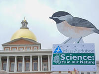Mass Audubon's sign at the March for Science Boston