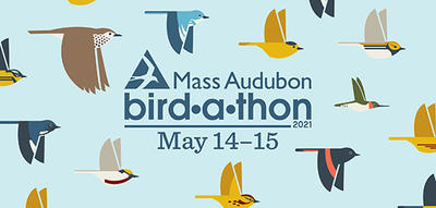 Bird-a-thon 2021 is May 14-15