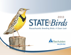 Massachusetts State of the Birds 2013 cover