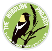 The Bobolink Project logo