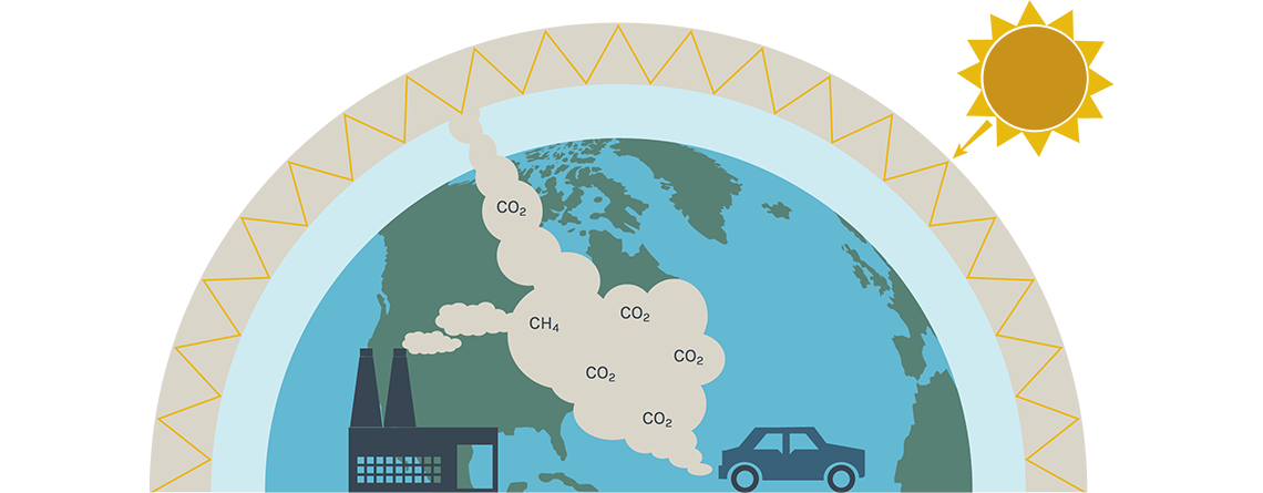 Climate CO2 cycle illustration