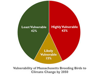 Graph of vulnerability of MA breeding birds to climate change by 2050
