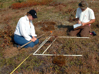 Scientists monitoring at Sesachacha Heathlands Wildlife Sanctuary