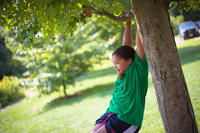 Young girl playing in a tree