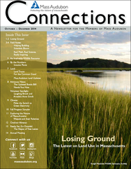 Mass Audubon Connections magazine fall winter 2014 issue