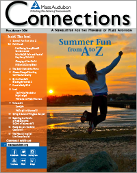 Connections Magazine Spring Summer 2014 Issue