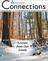 Mass Audubon Connections Newsletter Winter 2014
