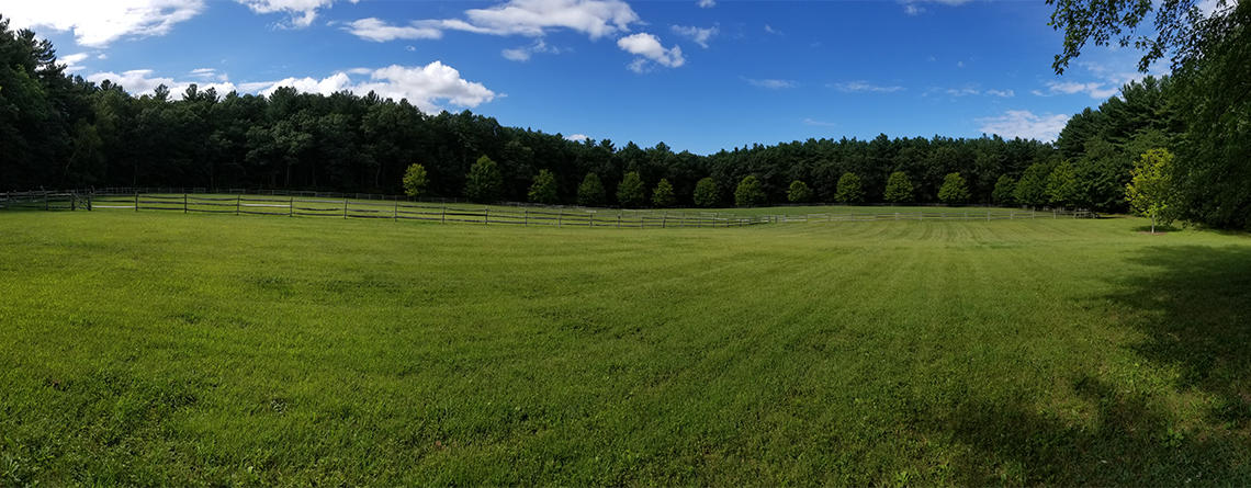 Brewster's Woods panorama by K Foresto (staff)