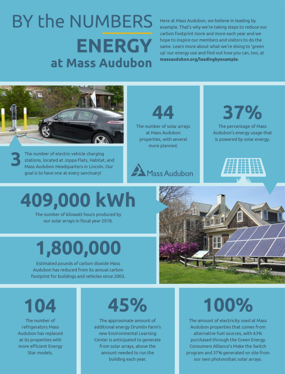 By the Numbers - Energy