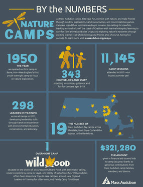 By the Numbers - Nature Camps