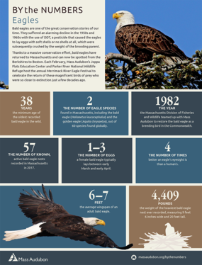 By the Numbers - Eagles