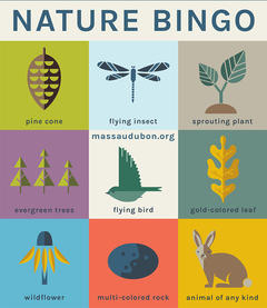 Mass Audubon Bingo Card - Nature Bingo #1