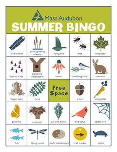 MA Bingo Card - Summer #1