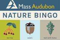 Mass Audubon Nature Bingo