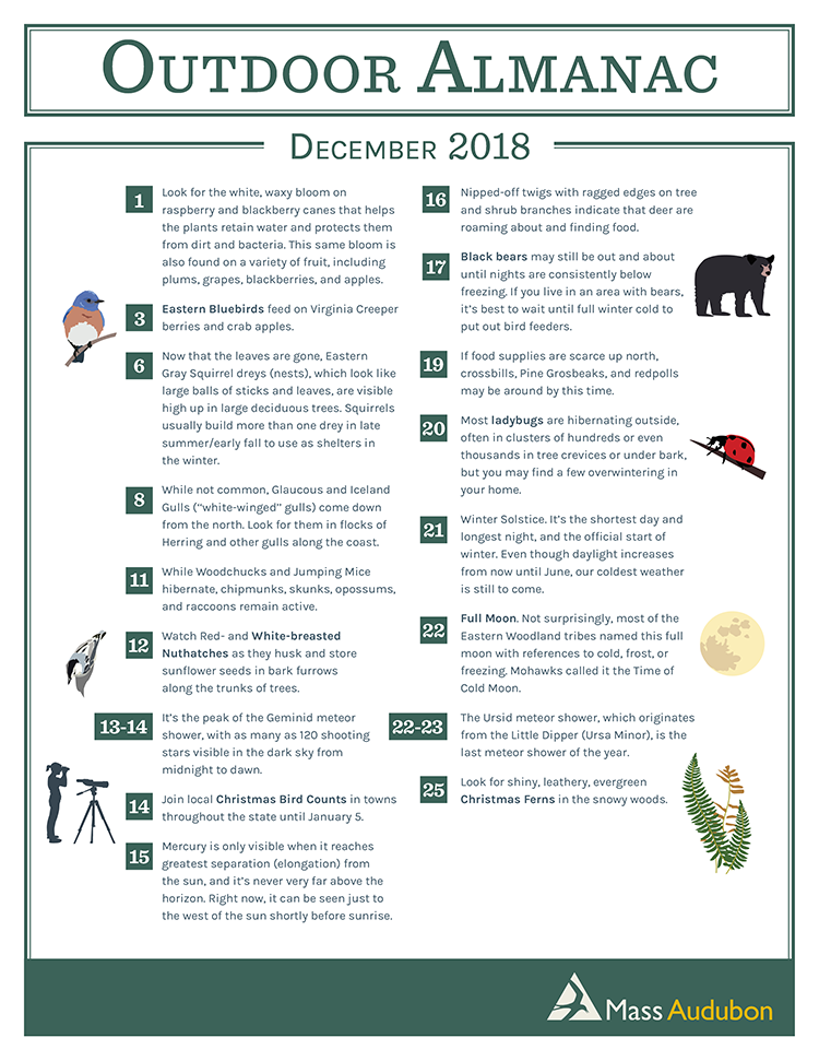 Outdoor Almanac - Fall 2018 - December