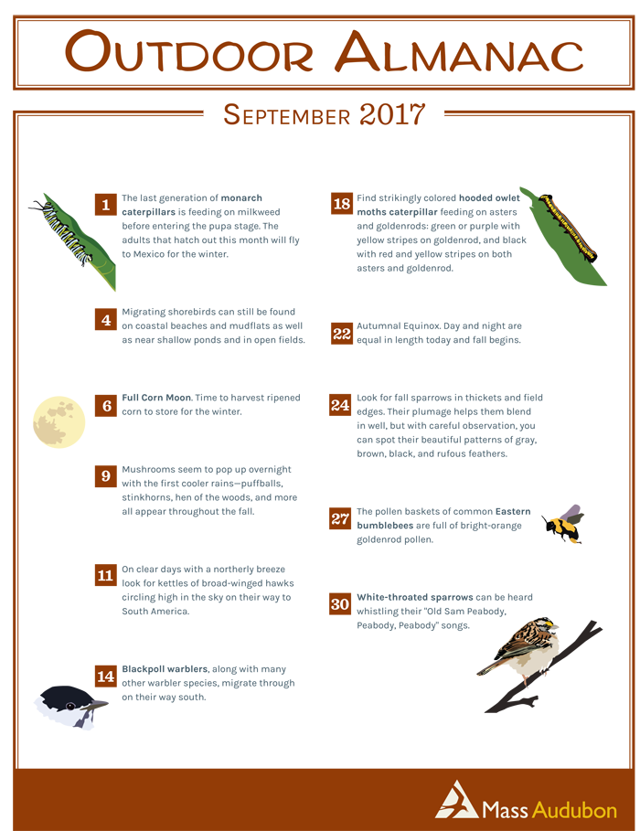 Outdoor Almanac Summer 2017 - September