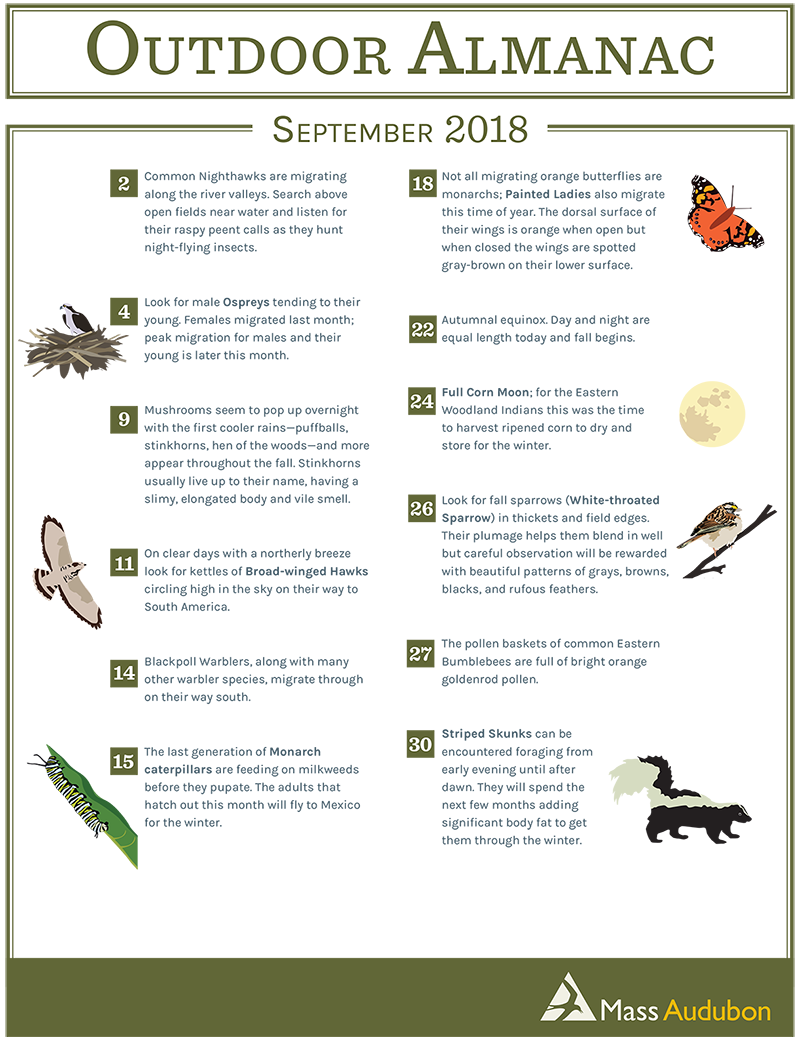 Outdoor Almanac - Summer 2018 - September