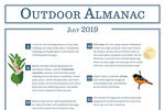 Outdoor Almanac - Summer 2019 - July