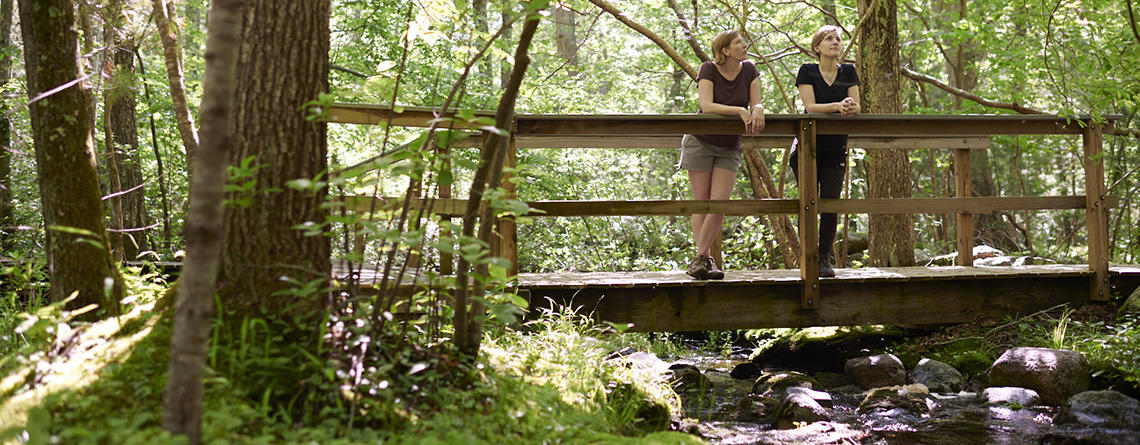 People on a trail bridge at North River Wildlife Sanctuary