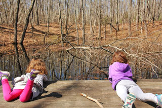 Vernal pool viewing platform at Broadmoor (Photo: Hillary Truslow)
