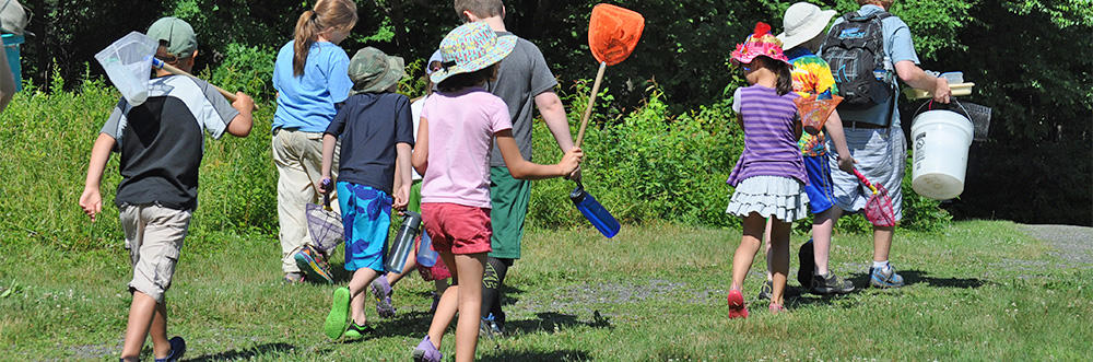 Campers with insect nets at Pleasant Valley Nature Day Camp