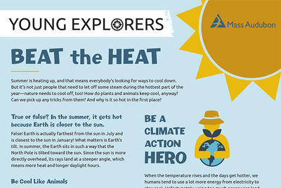 Beat the Heat - Activity Sheet - Summer 2020