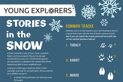 Stories in the Snow - Activity Sheet - Winter 2020