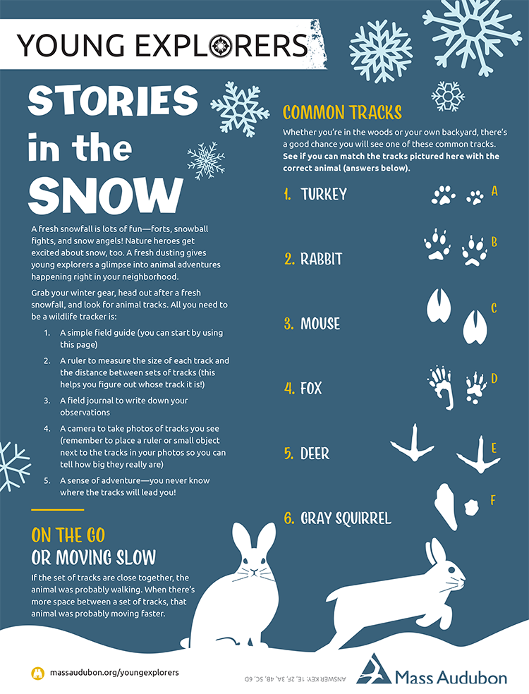 Young Explorers - Stories in the Snow activity sheet