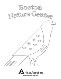 Boston Nature Center coloring page