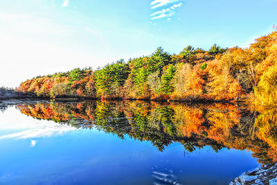 Calm lake reflecting fall foliage from nearby forest © David Sheehy