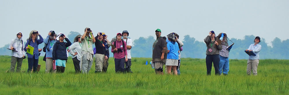 Group of teachers birding in the field