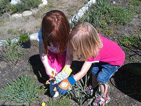 kids gardening at Mass Audubon Oak Knoll Wildlife Sanctuary