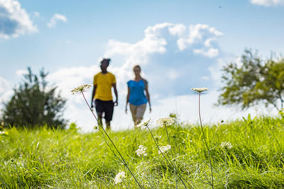 Man and woman walking in a meadow