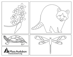 Nature coloring page #4