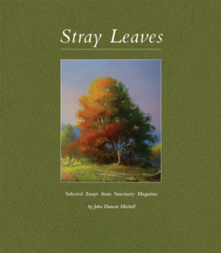 Stray Leaves: Selected Essays from Sanctuary Magazine