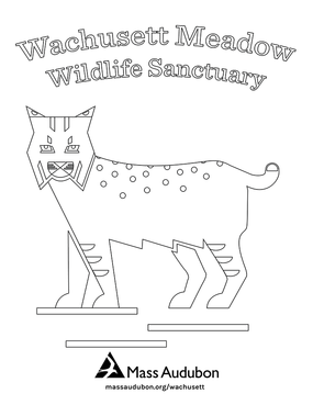 Wachusett Meadow coloring page
