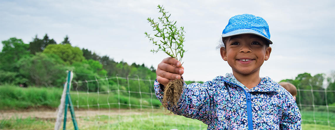 Young child holding up picked plant at Drumlin Farm