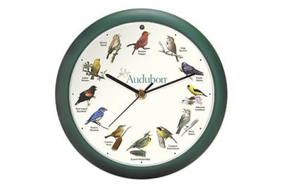 Bird Clock - Mass Audubon Shop