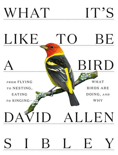 "Cover of ""What It's Like to Be a Bird"" by David Allen Sibley © Knopf"