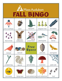 MA Bingo Card - Fall #1