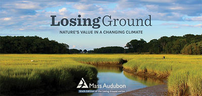 "Cover of ""Losing Ground 2020"" report (image © Julie Archibald)"