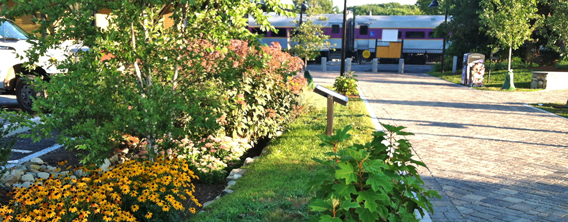 Rain garden at a MetroWest commuter rail station © Trisha Garrigan