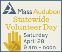 2018 Statewide Volunteer Day
