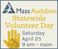 Statewide Volunteer Day - April 25, 2020