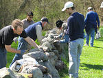 Mass Audubon volunteers weeding a stone wall