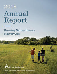 Cover of 2018 Annual Report