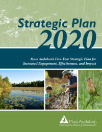 Mass Audubon Strategic Plan 2020