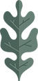 Green Oak Leaf icon